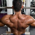 10 bodybuilding lies that will probably never die out