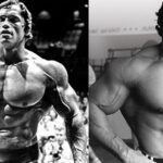 The chest and back training of Arnold