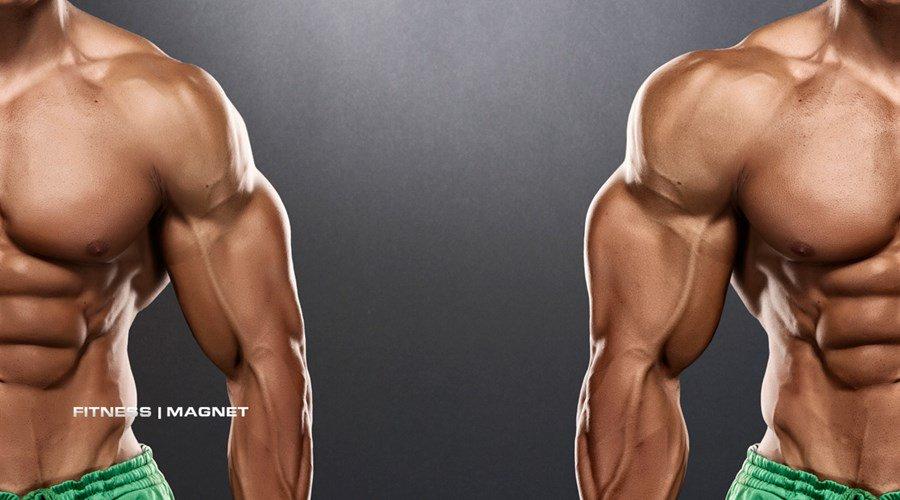 Bodybuilder mit großen Schwänzen Big dick hd porno