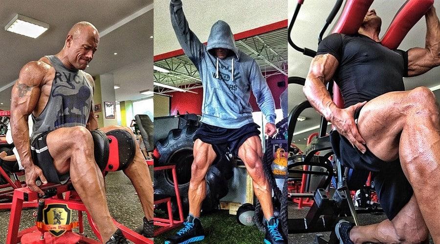 It\'s Leg Day - Die Anatomie der Beinmuskulatur - Fitnessmagnet©