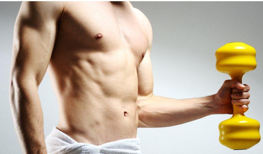 Muskelaufbau für den ektomorphen Körperbautyp - Fitnessmagnet©