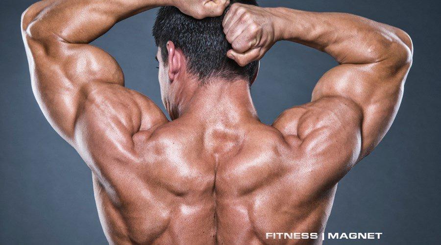 wie viel gramm fett pro tag muskelaufbau