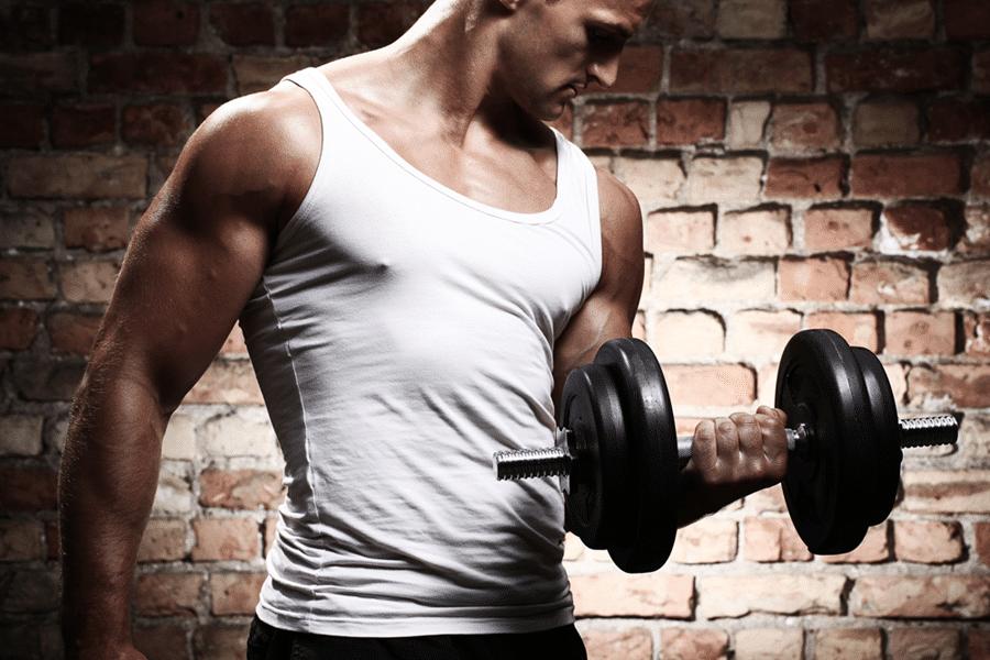 Muskelaufbau Viele Wiederholungen